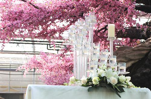 办一场樱花主题婚礼,定会让你的婚礼春意盎然