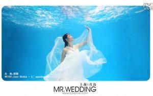 婚礼视频3(样片)