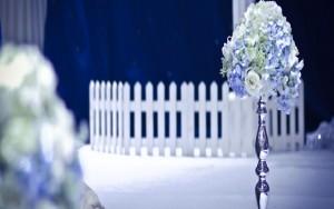 【蓝色之恋】主题婚礼