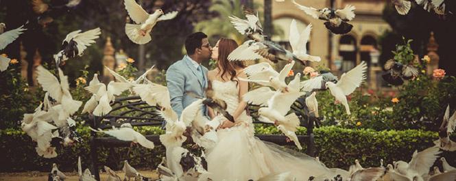 憧憬已久的婚礼梦想